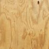 Plywood_King