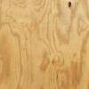 Plywood_King